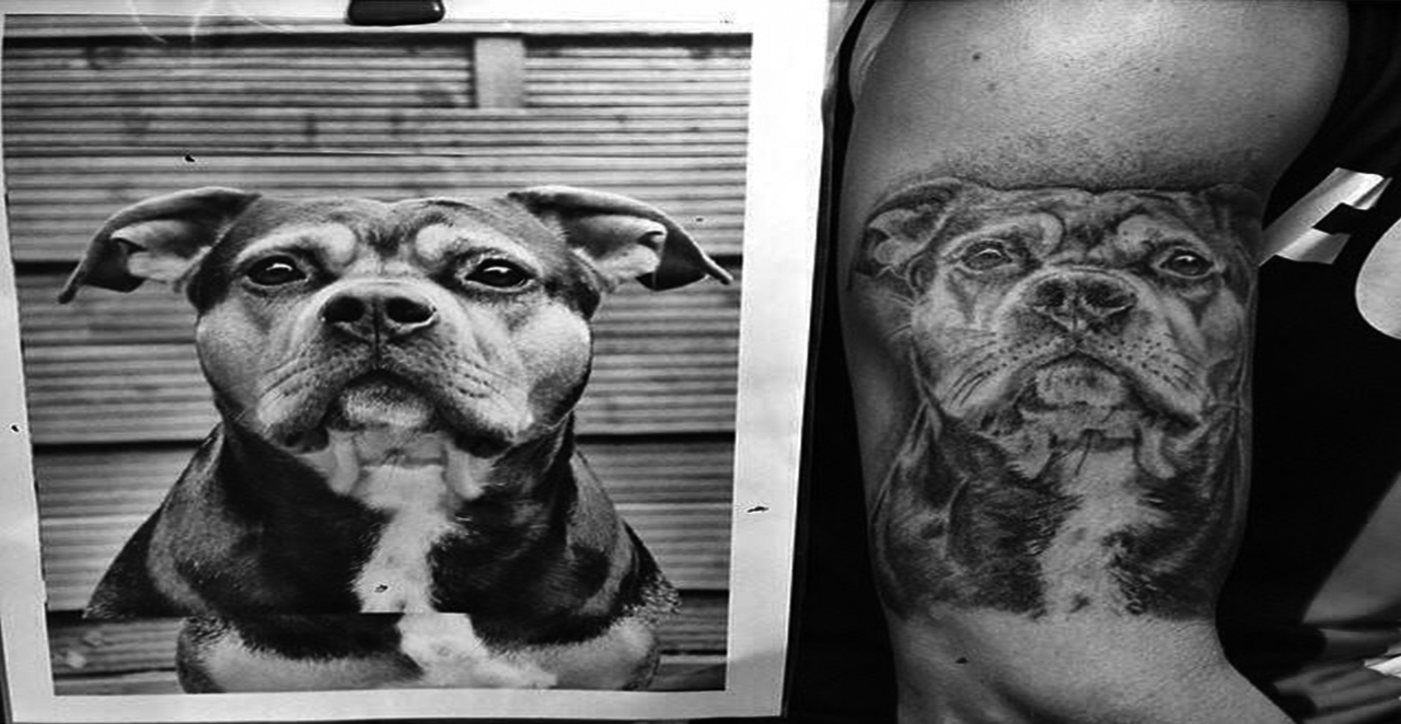 black and grey german sheppard portrait tattoo